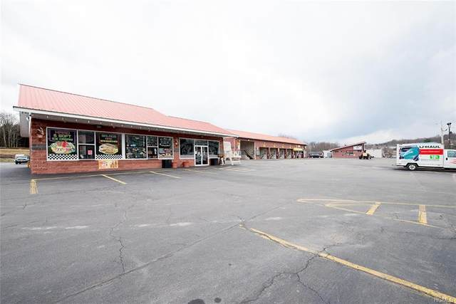 1855 State Route 52, Liberty Town, NY 12754 (MLS #H6023967) :: William Raveis Legends Realty Group