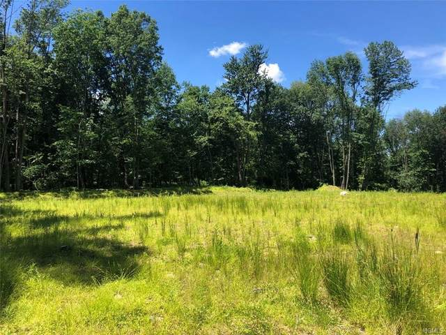 3 Oak Hill Road, Minisink, NY 10998 (MLS #H6024537) :: Cronin & Company Real Estate