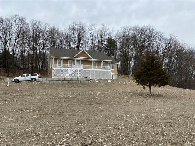 103 Shoddy Hollow Road, Mount Hope, NY 10963 (MLS #H6024713) :: Cronin & Company Real Estate