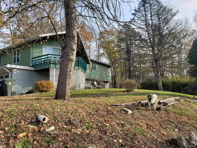 22 Snake Path Lane, Chester Town, NY 10918 (MLS #H6024757) :: Kevin Kalyan Realty, Inc.