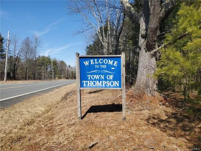 00 Sackett Lake Road, Thompson, NY 12701 (MLS #H6024816) :: William Raveis Baer & McIntosh