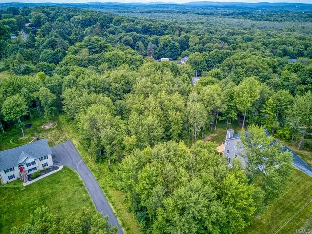 663 Rock Cut Road, Newburgh Town, NY 12586 (MLS #H6024873) :: William Raveis Baer & McIntosh