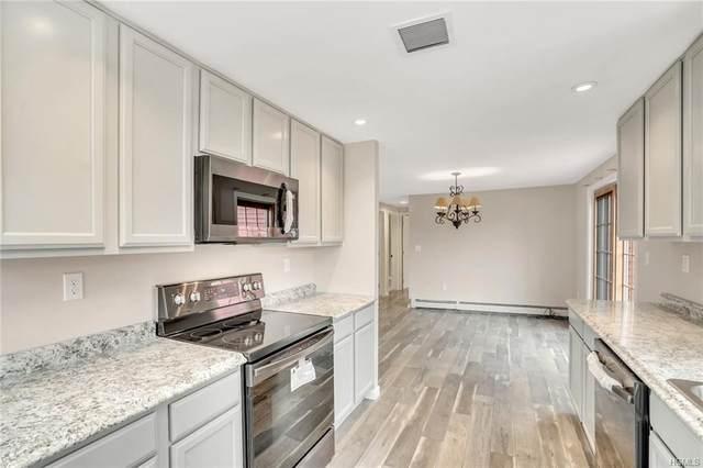 54 Newburgh Road, Patterson, NY 12563 (MLS #H6024930) :: Cronin & Company Real Estate