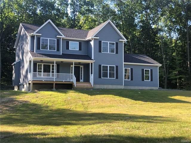 150 Schefflers, Minisink, NY 10998 (MLS #H6025428) :: Cronin & Company Real Estate
