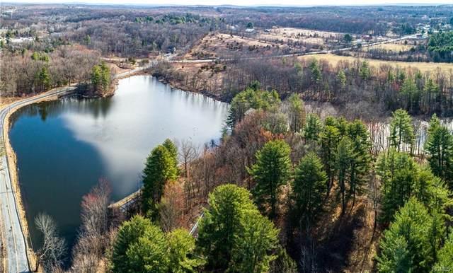 700 Prosperous Valley Road, Wallkill Town, NY 10940 (MLS #H6025462) :: Cronin & Company Real Estate