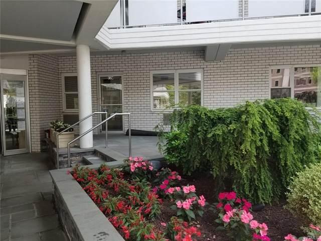 300 Martine Avenue, White Plains, NY 10601 (MLS #H6026429) :: Howard Hanna Rand Realty