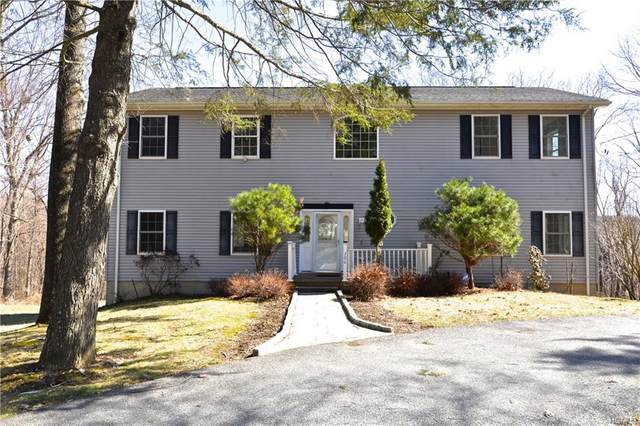 206 Longfellow Drive, Kent, NY 10512 (MLS #H6027399) :: William Raveis Baer & McIntosh