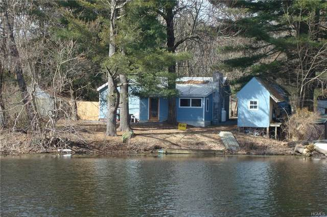 18 4th Avenue, Rhinebeck, NY 12572 (MLS #H6027981) :: Frank Schiavone with William Raveis Real Estate