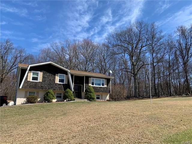 45 Country Knolls, Plattekill, NY 12515 (MLS #H6028010) :: Cronin & Company Real Estate