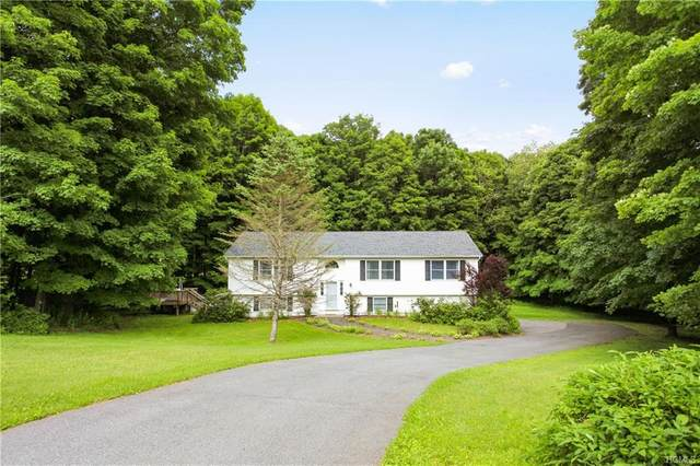 100 Cascade, Amenia, NY 12501 (MLS #H6028281) :: The Home Team