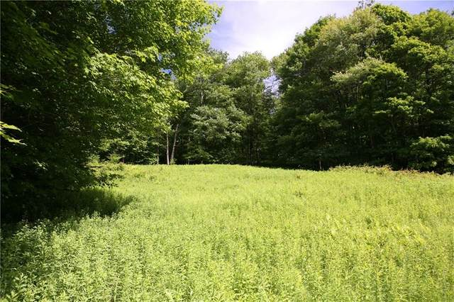 0 Rt 97, Hancock, NY 12760 (MLS #H4219922) :: Signature Premier Properties
