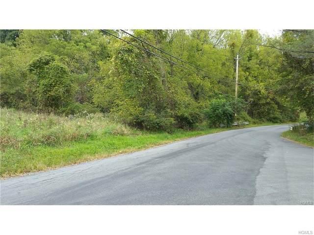 491 Newport Bridge Road, Warwick Town, NY 10969 (MLS #H4721924) :: Cronin & Company Real Estate