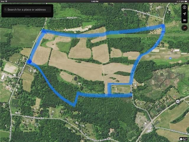 Schnieder Road, Hudson, NY 12541 (MLS #H4748330) :: Mark Seiden Real Estate Team