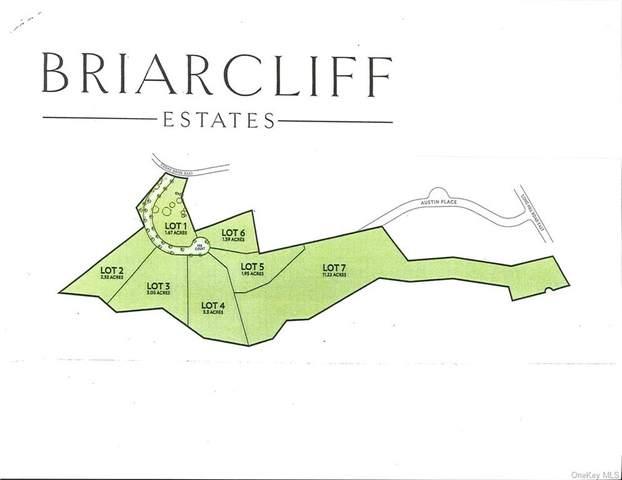 73 Fee Court, Ossining, NY 10510 (MLS #H4851505) :: Mark Seiden Real Estate Team