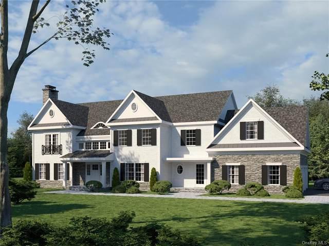 12 Chauncey Circle, Ardsley, NY 10502 (MLS #H4909941) :: Goldstar Premier Properties