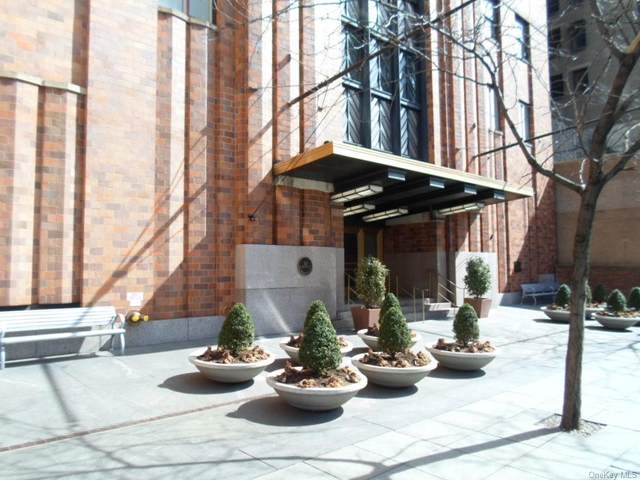 20 West Street 17A, Newyork, NY 10004 (MLS #H4918120) :: Cronin & Company Real Estate