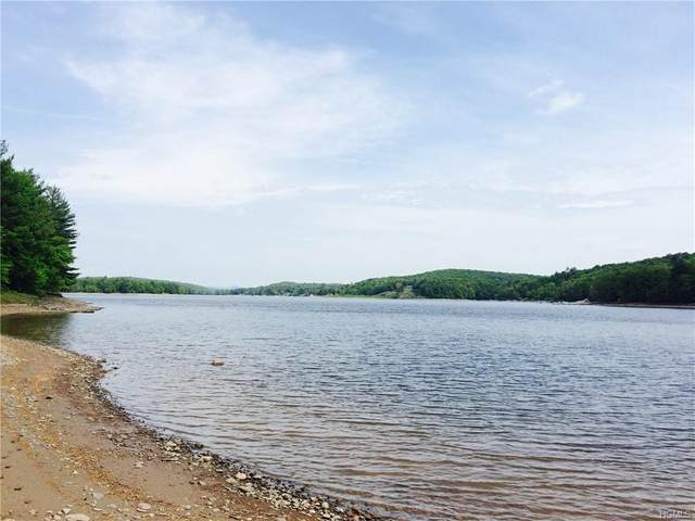 Lot 29 Woodstone Trail, Bethel, NY 12786 (MLS #H4920239) :: Cronin & Company Real Estate