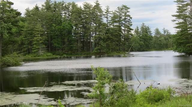 Lot #15 Swamp Pond Road, Narrowsburg, NY 12764 (MLS #H4948904) :: Kevin Kalyan Realty, Inc.