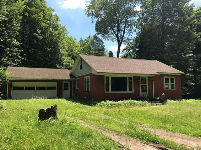 178 County Road 94, Fremont, NY 12741 (MLS #H4956713) :: William Raveis Baer & McIntosh