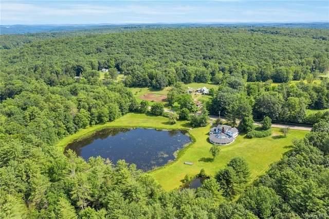 6157 Nys Rt 97, Tusten, NY 12764 (MLS #H4974479) :: Mark Seiden Real Estate Team