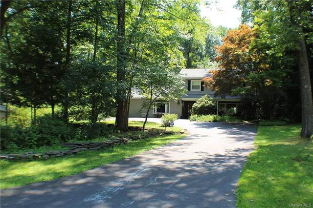 242 Summit Drive, New Windsor, NY 12553 (MLS #H4982203) :: Barbara Carter Team