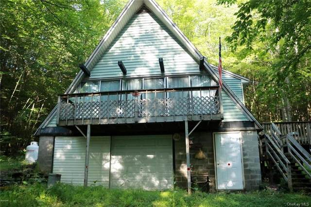90 Blaise Road, Hancock, NY 13783 (MLS #H4999840) :: William Raveis Legends Realty Group