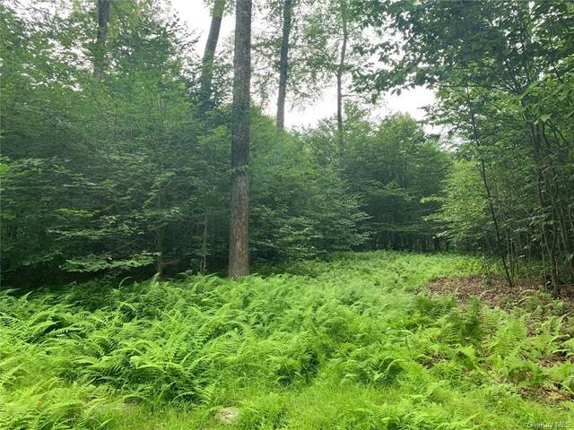 Lot 9 Overview Court, Bethel, NY 12720 (MLS #H5007320) :: William Raveis Baer & McIntosh
