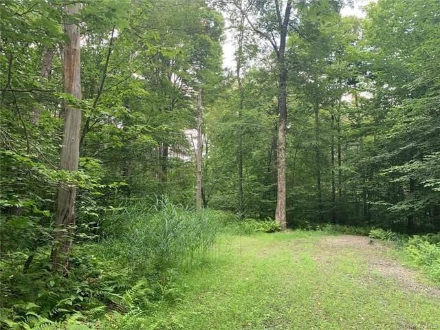 Lot 39 Chapin Trail, Bethel, NY 12720 (MLS #H5007332) :: Frank Schiavone with Douglas Elliman