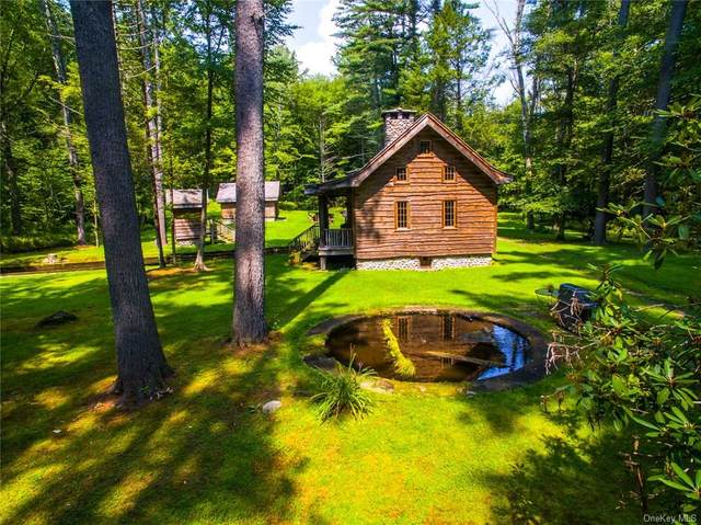 414 Upper Jenny Brook Road, Wawarsing, NY 12489 (MLS #H5011924) :: William Raveis Baer & McIntosh