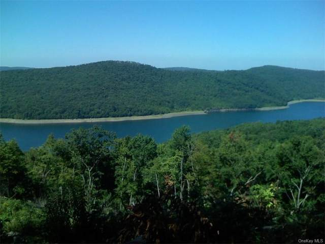 Crystal Lake Road, Other, NY 13754 (MLS #H5021669) :: Frank Schiavone with William Raveis Real Estate