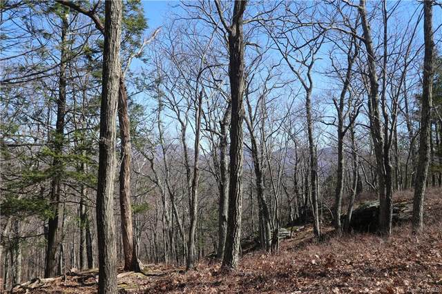 Mountain Road, Olive, NY 12481 (MLS #H5023521) :: Signature Premier Properties