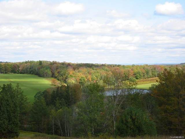 Lot 2&3 Plank Road, Beach Lake, PA 18405 (MLS #H5053234) :: Frank Schiavone with William Raveis Real Estate