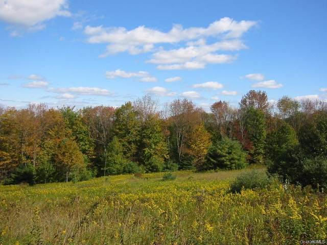 Lot 4 & 5 Plank Road, Beach Lake, PA 18405 (MLS #H5053292) :: Frank Schiavone with William Raveis Real Estate