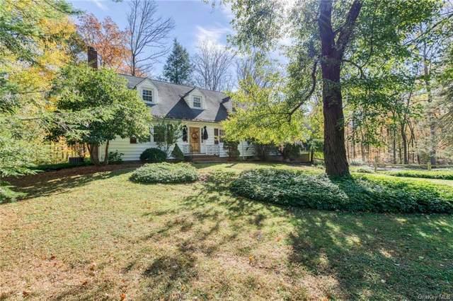 9 Wilbur Road, Ramapo, NY 10901 (MLS #H5101654) :: Signature Premier Properties