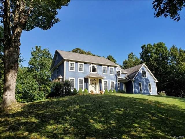 59 Barraco Boulevard, Rhinebeck, NY 12572 (MLS #H5101880) :: Kendall Group Real Estate | Keller Williams