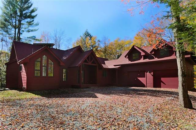 228 Chapin Trail, Bethel, NY 12720 (MLS #H5103210) :: Frank Schiavone with William Raveis Real Estate