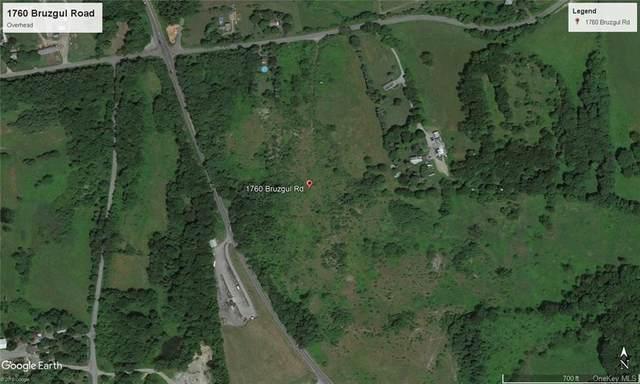 1760 Bruzgul Road, Lagrangeville, NY 12540 (MLS #H5118936) :: Signature Premier Properties