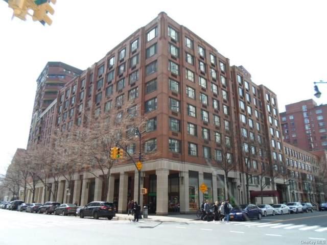 300 Albany Street 9M, Newyork, NY 10280 (MLS #H5119816) :: Live Love LI