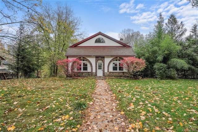 132 Old State Route 22, Dover Plains, NY 12522 (MLS #H5122253) :: Kevin Kalyan Realty, Inc.