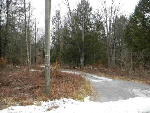 Big Woods Road, Thompson, NY 12742 (MLS #H5125583) :: RE/MAX Edge