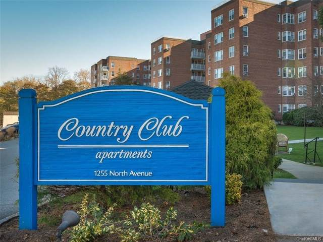 1255 North Avenue 1C, New Rochelle, NY 10804 (MLS #H5127985) :: McAteer & Will Estates | Keller Williams Real Estate