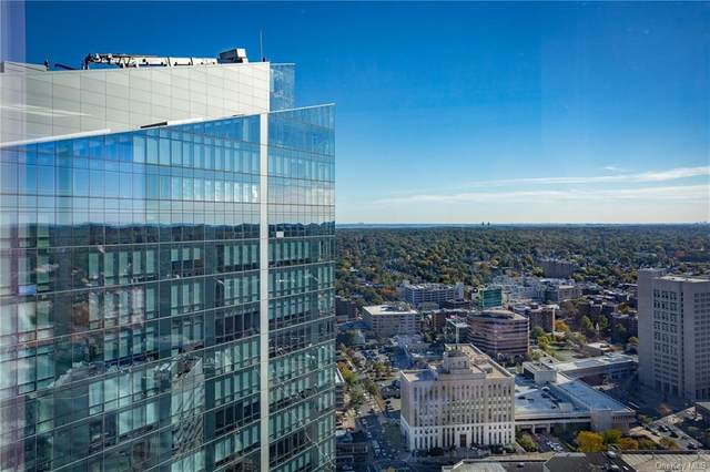 5 Renaissance Square 41PH10CG, White Plains, NY 10601 (MLS #H5130063) :: Signature Premier Properties