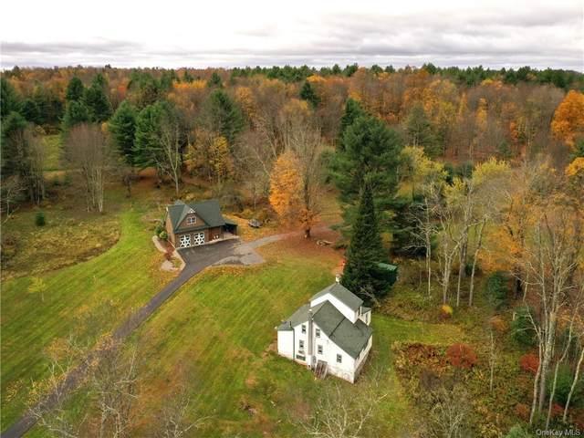 260 Segar & Rosenberg Road, Bethel, NY 12720 (MLS #H6001303) :: Cronin & Company Real Estate