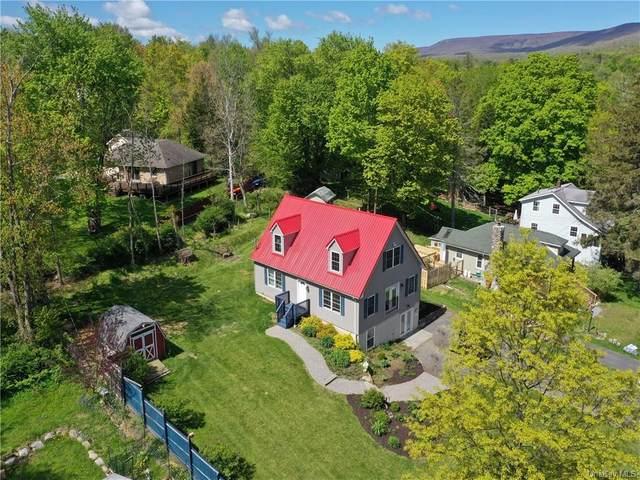 344 Lake Avenue, Wallkill, NY 12589 (MLS #H6002358) :: McAteer & Will Estates | Keller Williams Real Estate