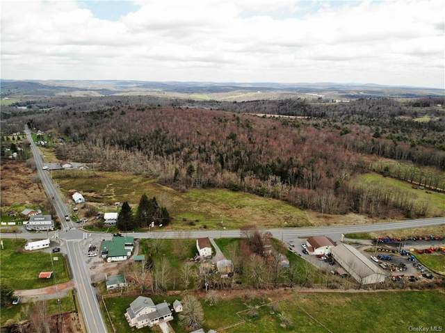 3158 State Route 52, Cochecton, NY 12726 (MLS #H6005359) :: Cronin & Company Real Estate