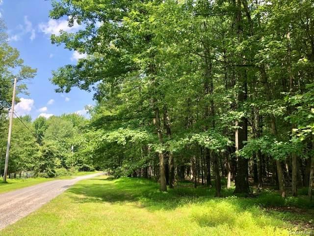 Chestnut Hill Road, Rochester, NY 14617 (MLS #H6009176) :: William Raveis Baer & McIntosh