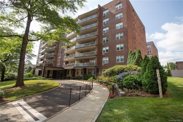 360 Westchester Avenue #610, Port Chester, NY 10573 (MLS #H6012192) :: Mark Seiden Real Estate Team