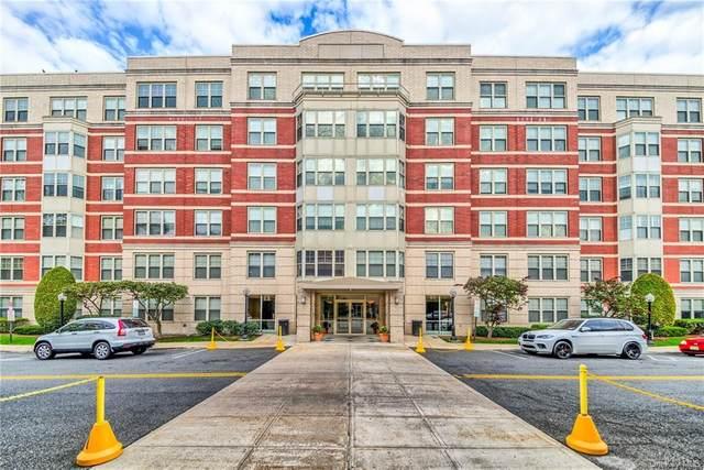 300 Mamaroneck Avenue #411, White Plains, NY 10605 (MLS #H6015902) :: Marciano Team at Keller Williams NY Realty