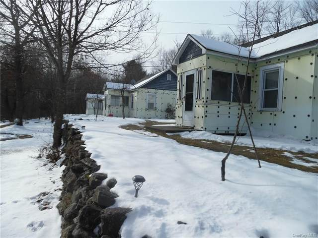 833 Old Route 17, Thompson, NY 12742 (MLS #H6017257) :: RE/MAX Edge