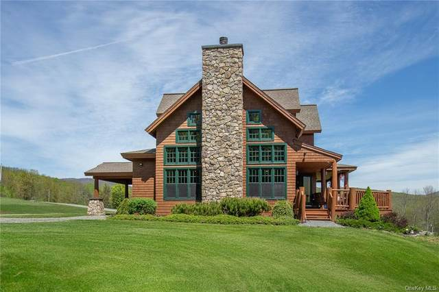 248 Golf Course Road, Other, NY 12474 (MLS #H6017407) :: Marciano Team at Keller Williams NY Realty